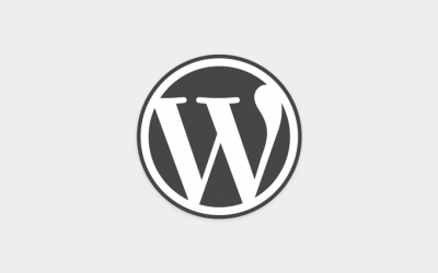 WordPress für die eigene Homepage nutzen